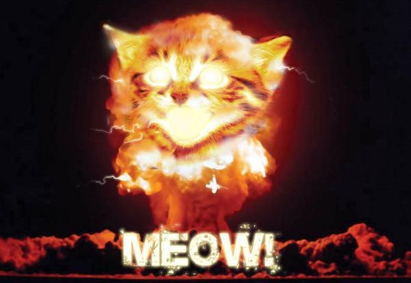 fire meow افزایش امنیت وردپرس: راه کارهای امنیتی ساده اما قدرتمند + افزونه