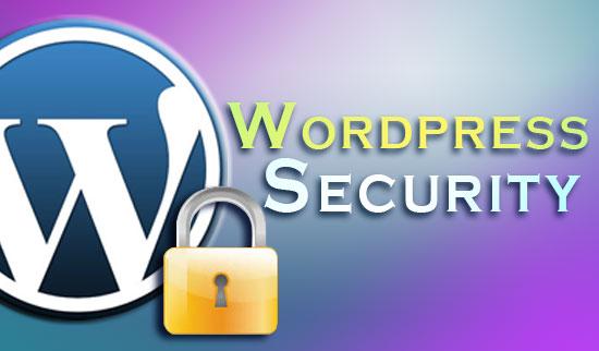 wordpress security1 برقراری امنیت در وردپرس – بخش دوم : نکات حیاتی هنگام نصب و آغاز فعالیت